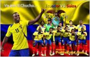Ecuador dedicar� partido contra Suiza a memoria del